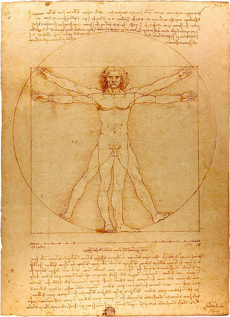 Vitruvian Man, click for larger image